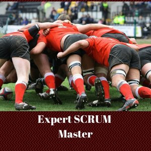 SCRUM Expert Master