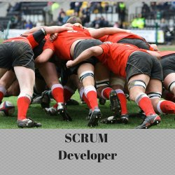 SCRUM Developer