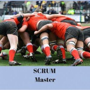 Scrum-Master